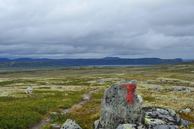 Salomon Xreid Hardangervidda